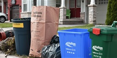 Recycling and Waste Sorting Guide Thumbnail Image