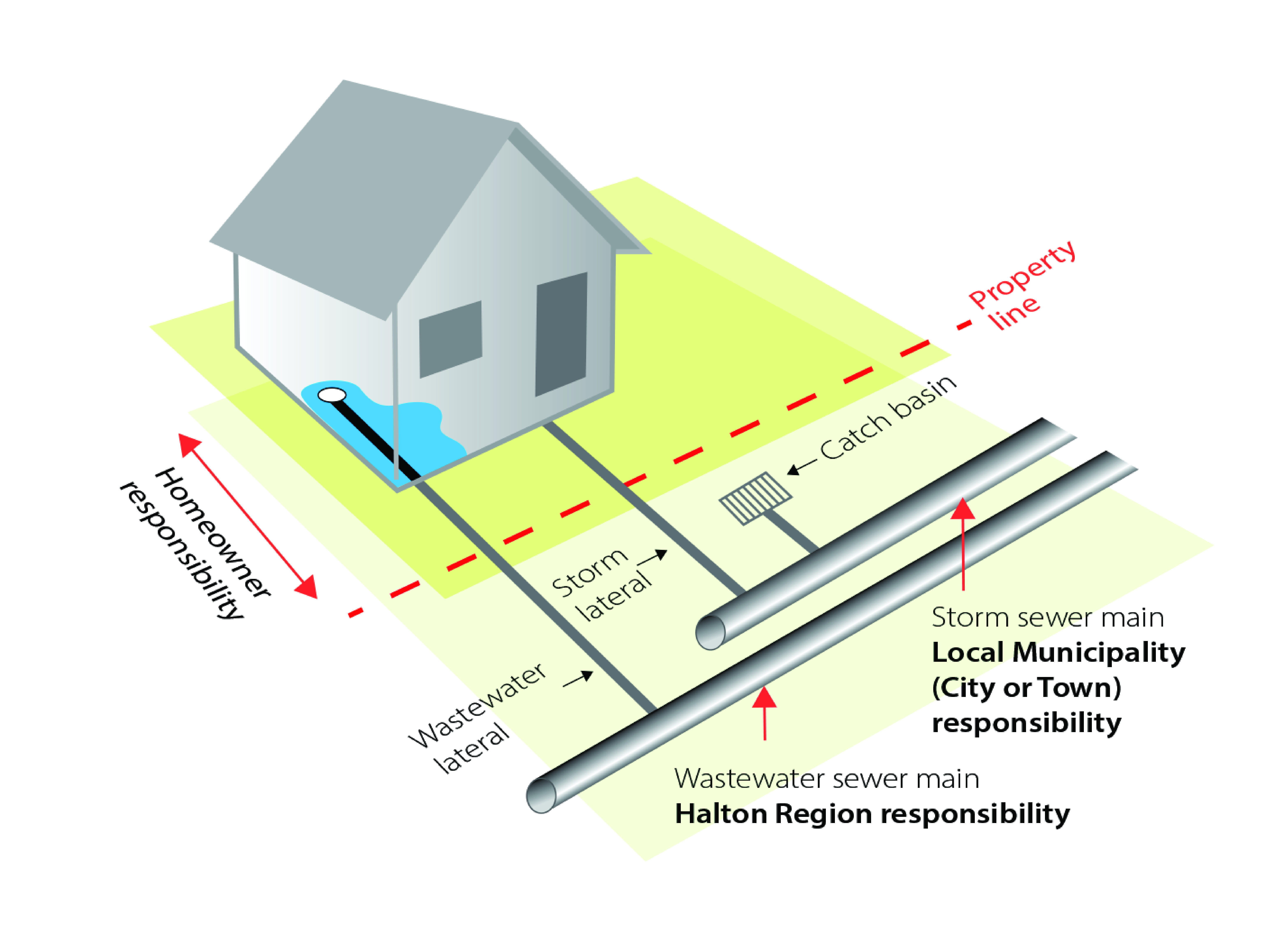 Diagram of house that shows homeowner responsibility, property line, storm lateral, wasterwater lateral, storm sewer main and wastewater sewer main
