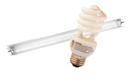 Fluorescent lights, CFL bulbs (8 maxiumum per visit)